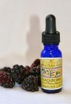 Blackberry Essence 1/2 oz. (15 ml.)