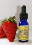 Strawberry Essence 1/2 oz. (15 ml.)